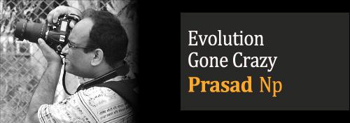 Evolution Gone Crazy - Children Think Differently