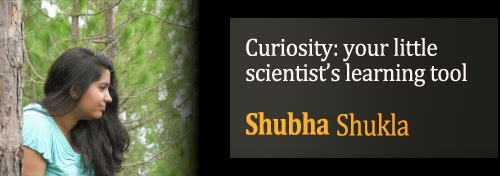 Curiosity: Your Little Scientist Tool