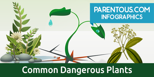 common plants dangerous for kids